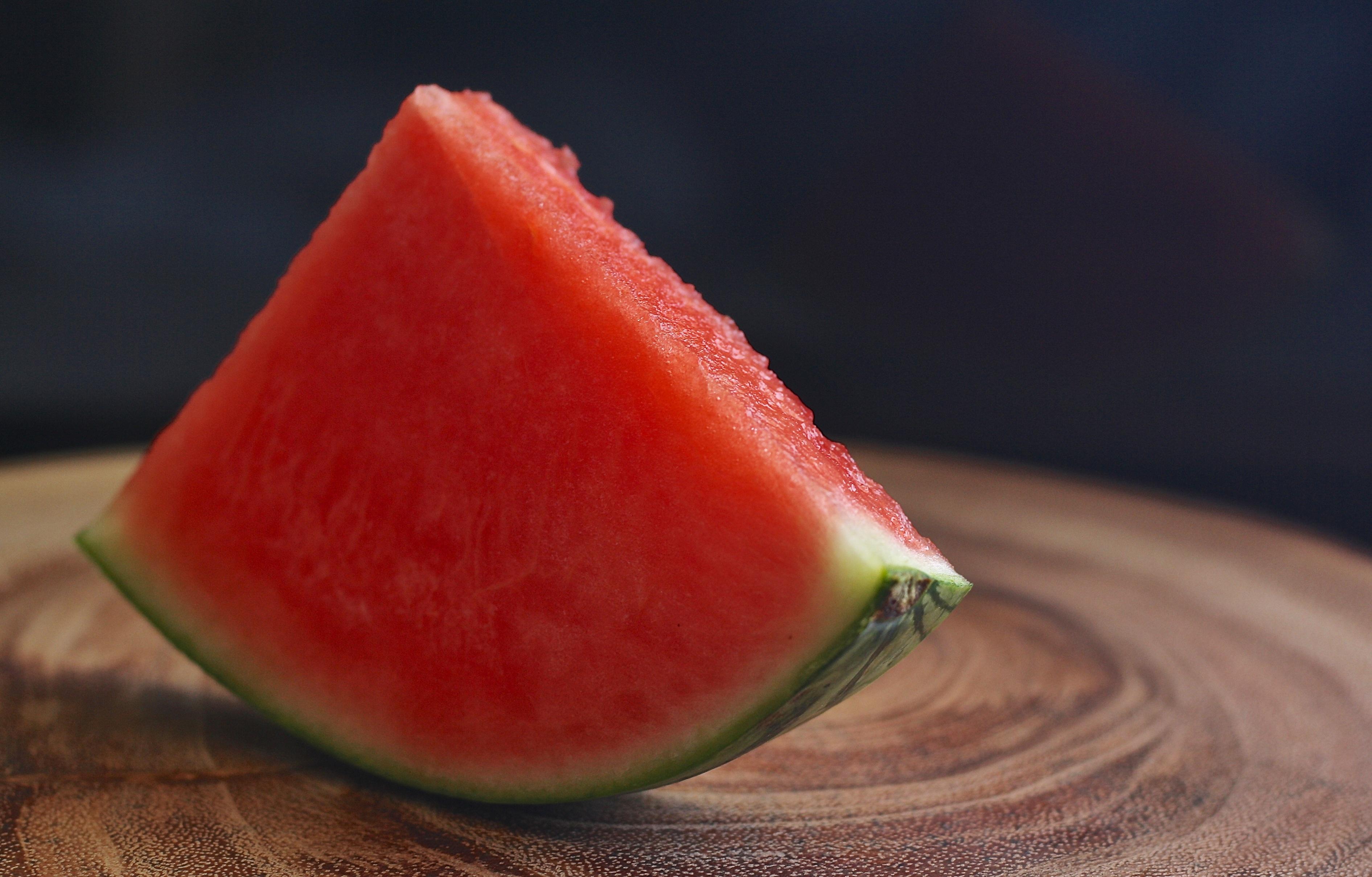 Cachorro pode comer melancia 2