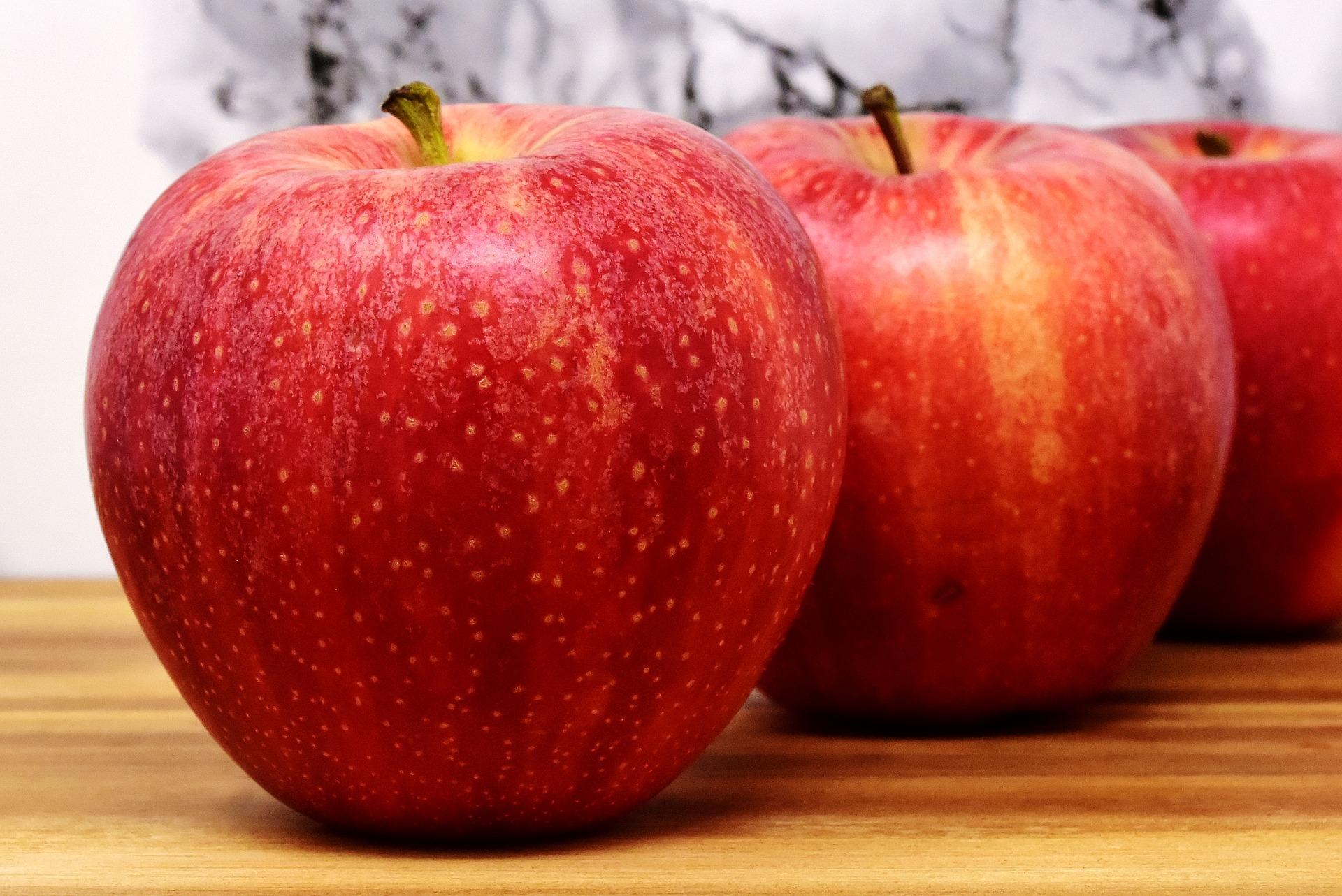 cachorro pode comer maçã 1