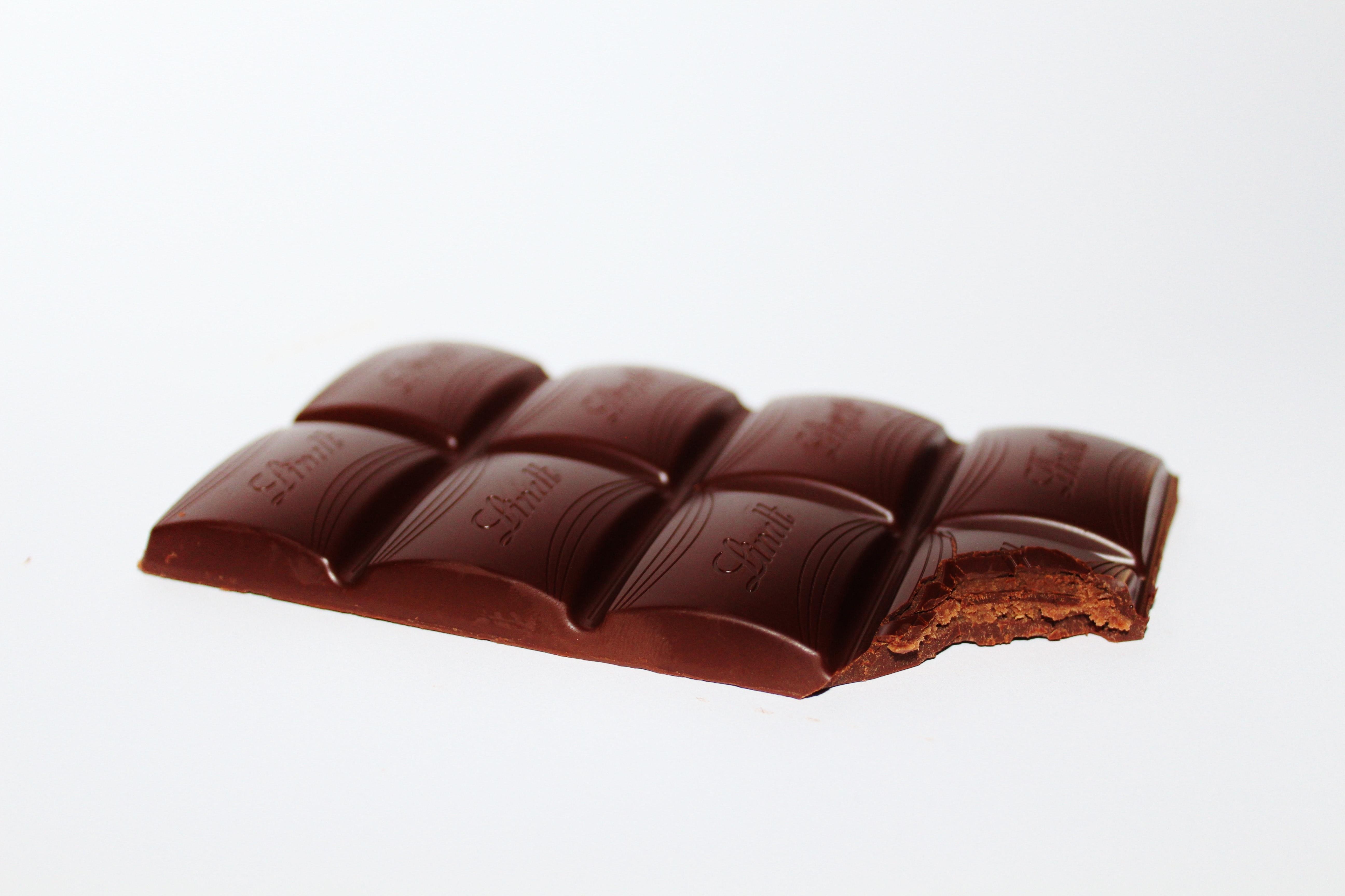 cachorro pode comer chocolate 3