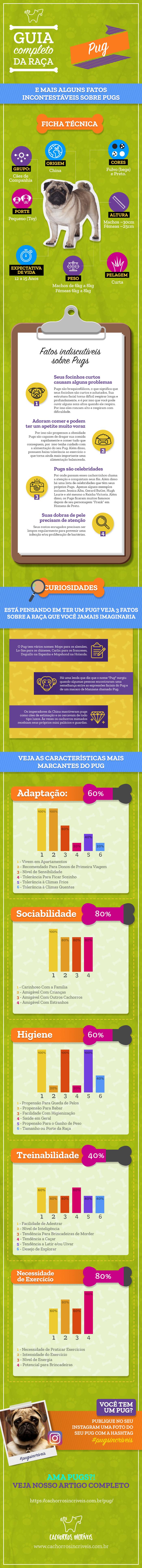 Infográfico Pug