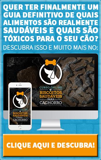 Curso Online Biscoitos Saudáveis para Cachorros