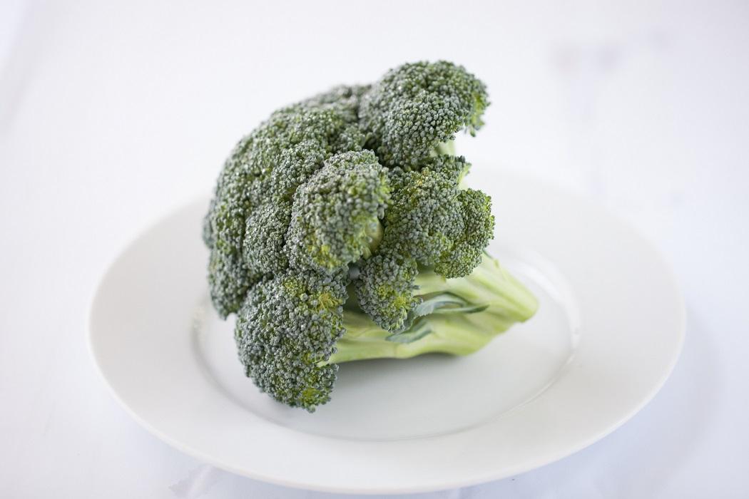 cachorro pode comer brócolis 04