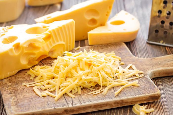 cachorro pode comer queijo 5