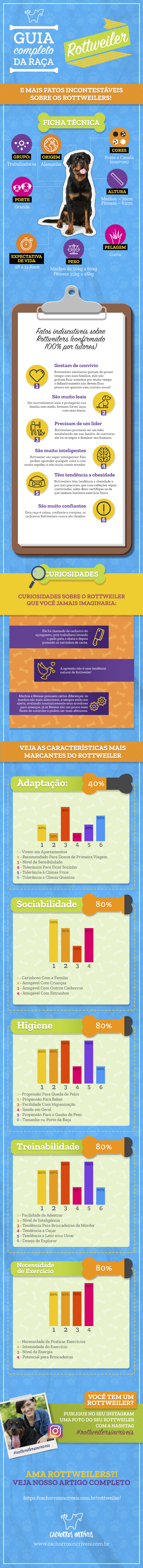 infográfico rottweilwer